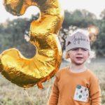Geburtstagskrone bestickt Tragebild